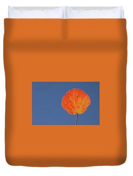 Duvet Cover featuring the photograph Aspen Leaf 1 by Marie Leslie