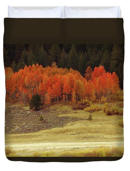 Aspen, October, Hope Valley Duvet Cover