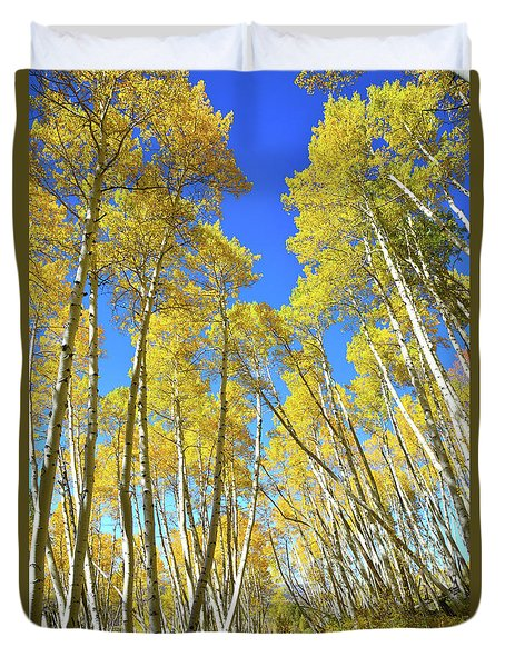 Duvet Cover featuring the photograph Aspen Road by Ray Mathis