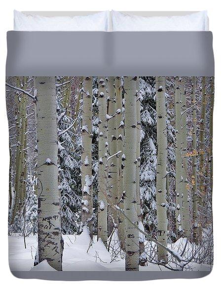 Aspen Snow Duvet Cover