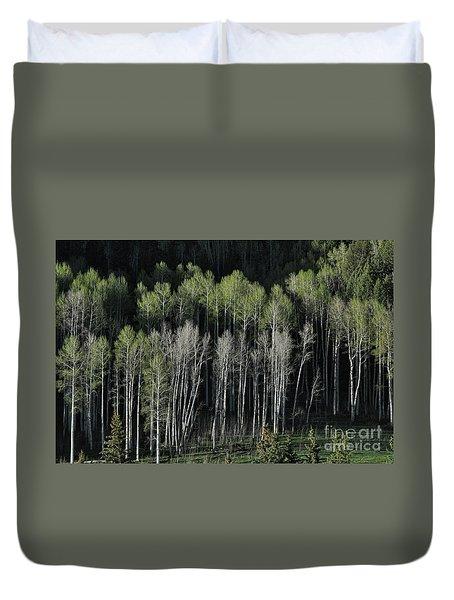Aspen Spring Duvet Cover