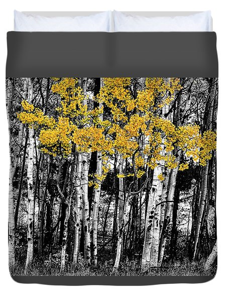 Duvet Cover featuring the photograph Aspen Touch Of Orange by James BO Insogna