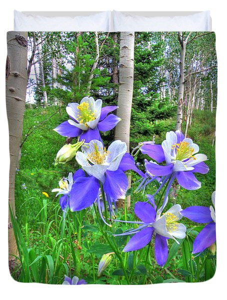 Aspens And Columbines Duvet Cover