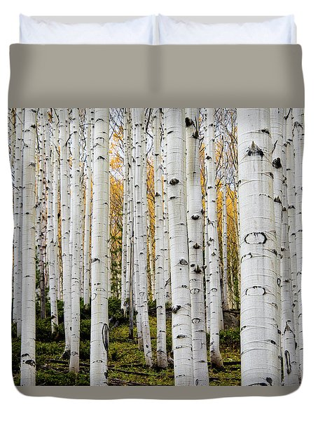 Aspens And Gold Duvet Cover
