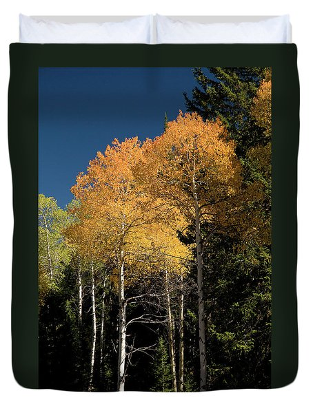 Duvet Cover featuring the photograph Aspens And Sky by Steve Stuller