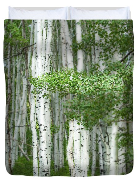 Aspens, Colorado Duvet Cover