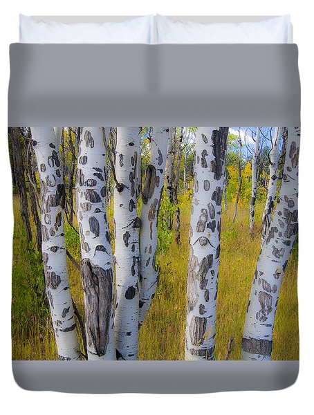 Duvet Cover featuring the photograph Aspens by Gary Lengyel