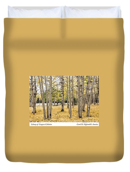 Aspens In Conejos County In Colorado, Near The New Mexico Border Duvet Cover by Carol M Highsmith