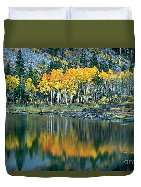 Aspens In Fall Color Along Lundy Lake Eastern Sierras California Duvet Cover by Dave Welling