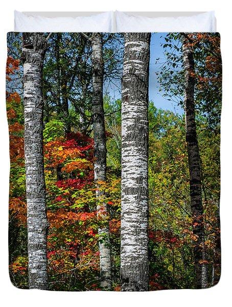Aspens In Fall Forest Duvet Cover