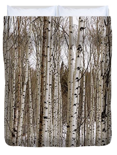 Aspens In Winter Panorama - Colorado Duvet Cover