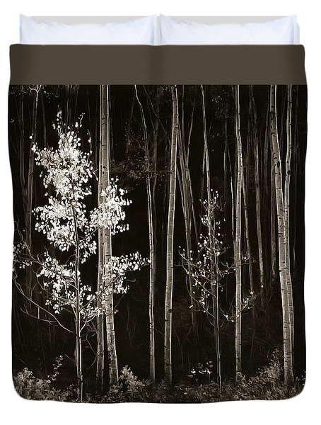 Aspens Northern New Mexico Duvet Cover