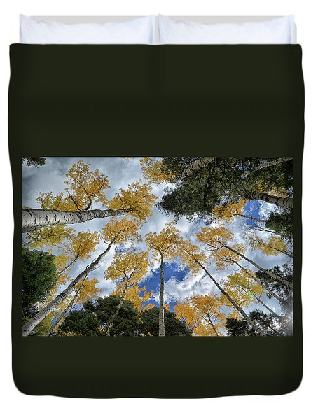 Duvet Cover featuring the photograph Aspens Reaching by Kevin Munro