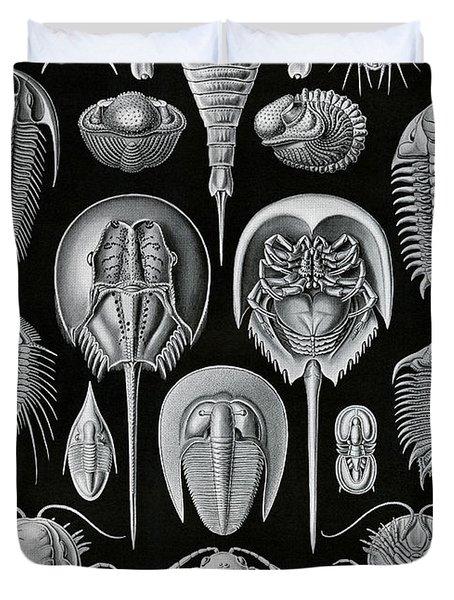Aspidonia Duvet Cover