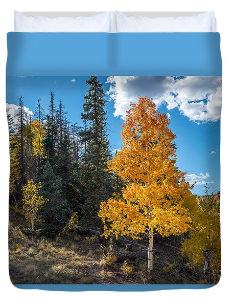 Aspen Tree In Fall Colors San Juan Mountains, Colorado. Duvet Cover