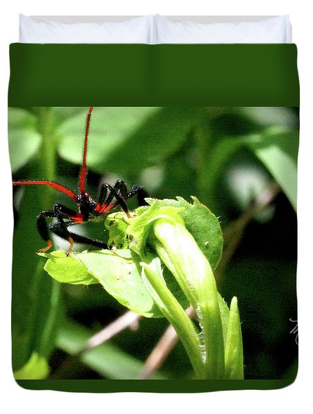 Duvet Cover featuring the photograph Assassin Bug by Meta Gatschenberger