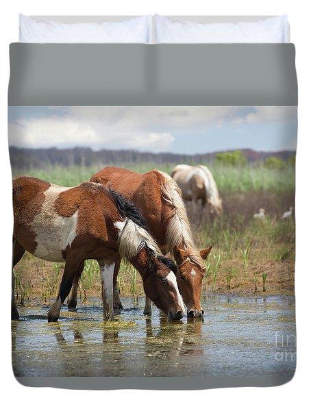 Assateague Ponies Tale Drink Duvet Cover