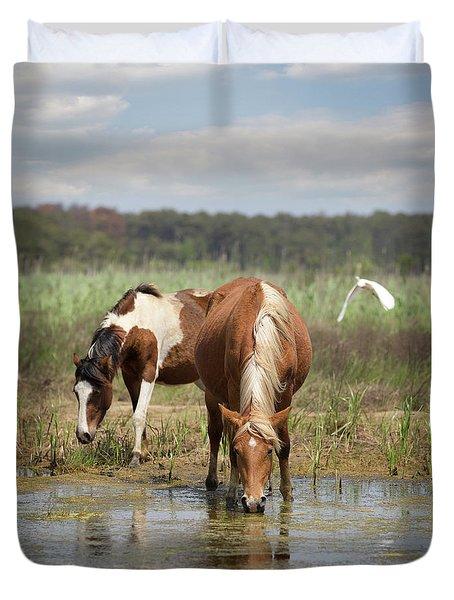 Assateague Pony Pair Duvet Cover