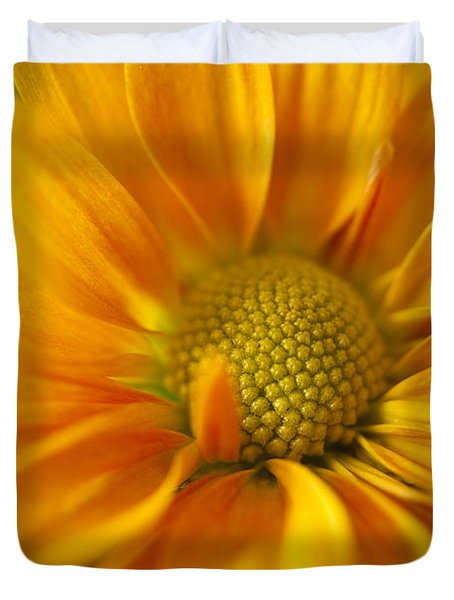 Aster Close Up Duvet Cover