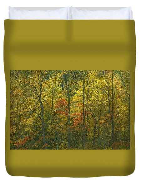 At The Edge Of The Forest Duvet Cover by Ulrich Burkhalter