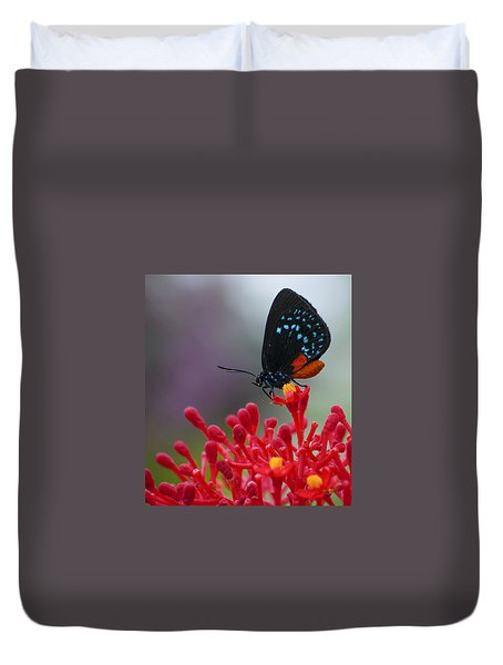 Duvet Cover featuring the photograph Atala by Penny Lisowski