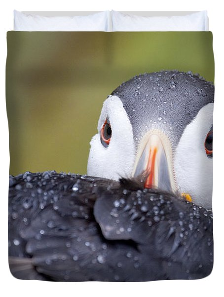 Atlantic Puffin With Rain Drops Duvet Cover
