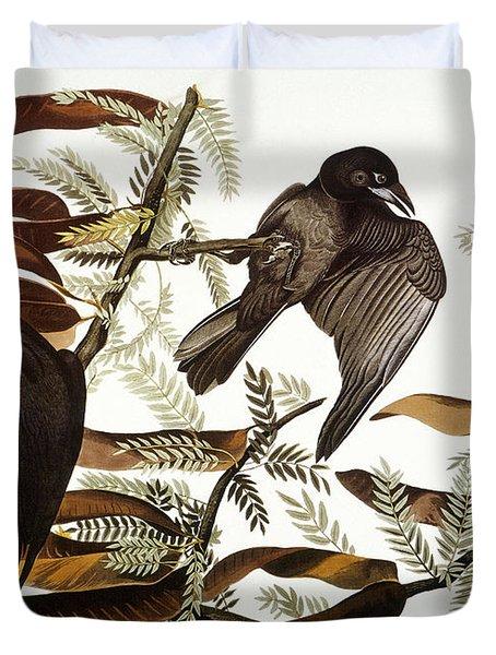 Audubon: Crow Duvet Cover by Granger