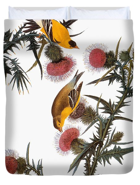 Audubon: Goldfinch Duvet Cover
