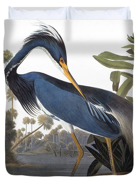Audubon Heron, 1827 Duvet Cover