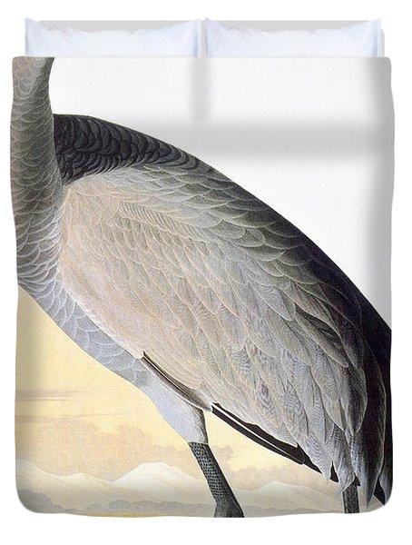 Audubon: Sandhill Crane Duvet Cover
