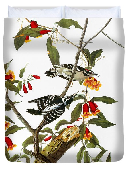 Audubon: Woodpecker, 1827 Duvet Cover