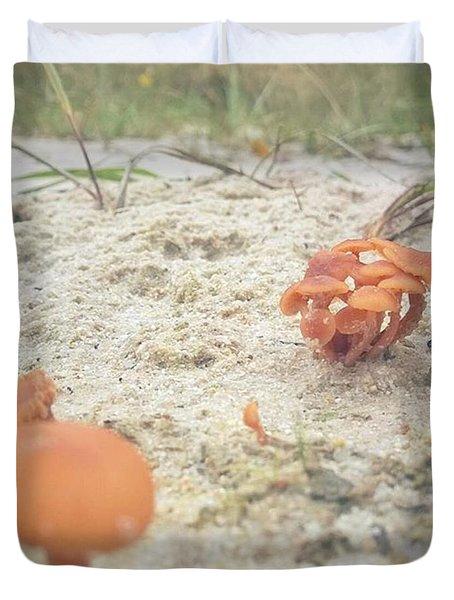 Auf Pilzjagd.  #pilze #sandboden Duvet Cover