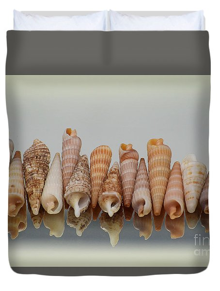 Auger Shells Duvet Cover