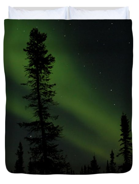 Aurora Borealis The Northern Lights Interior Alaska Duvet Cover