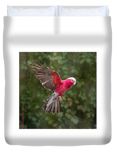 Australian Galah Parrot In Flight Duvet Cover