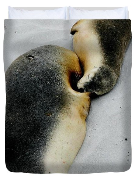 Australian Sea Lions Duvet Cover