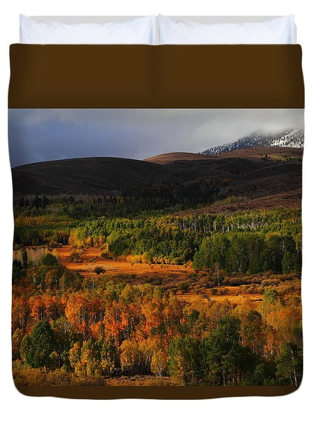 Autumn Aspen At Conway Summit In The Eastern Sierras Duvet Cover by Jetson Nguyen