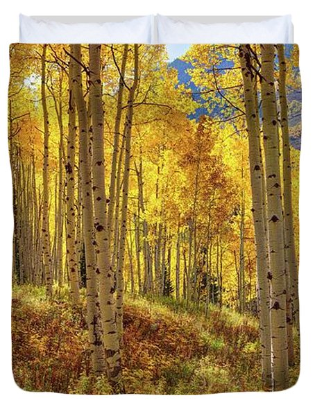 Autumn Aspen Forest Aspen Colorado Panorama Duvet Cover