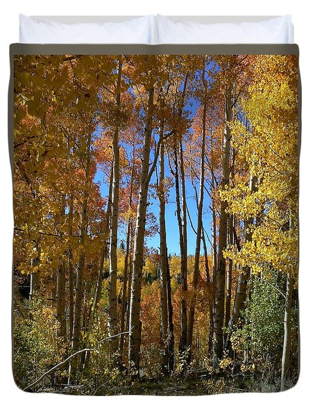 Autumn Aspen Grove Dixie National Forest Utah Duvet Cover
