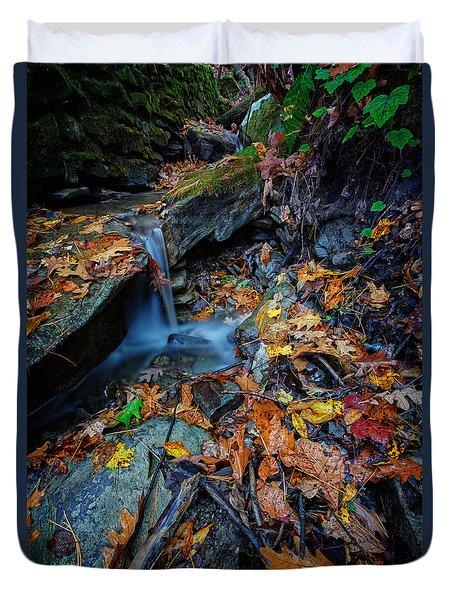 Autumn At A Mountain Stream Duvet Cover by Rick Berk