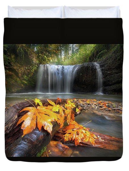 Autumn At Hidden Falls Duvet Cover by David Gn