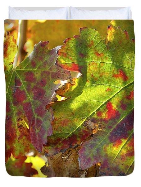Duvet Cover featuring the photograph Autumn At Lachish Vineyards 2 by Dubi Roman