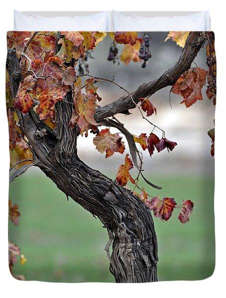 Duvet Cover featuring the photograph Autumn At Lachish Vineyards 3 by Dubi Roman