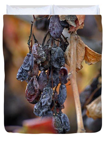 Duvet Cover featuring the photograph Autumn At Lachish Vineyards 4 by Dubi Roman