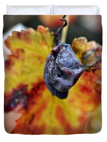 Duvet Cover featuring the photograph Autumn At Lachish Vineyards 5 by Dubi Roman