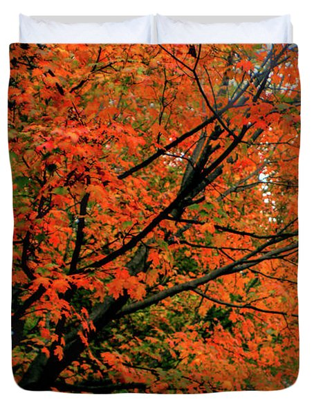 Autumn At The Window Duvet Cover