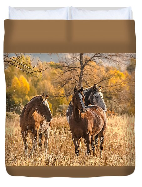 Duvet Cover featuring the photograph Autumn Beauty At Dawn by Yeates Photography