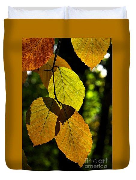Autumn Beech Tree Leaves Duvet Cover