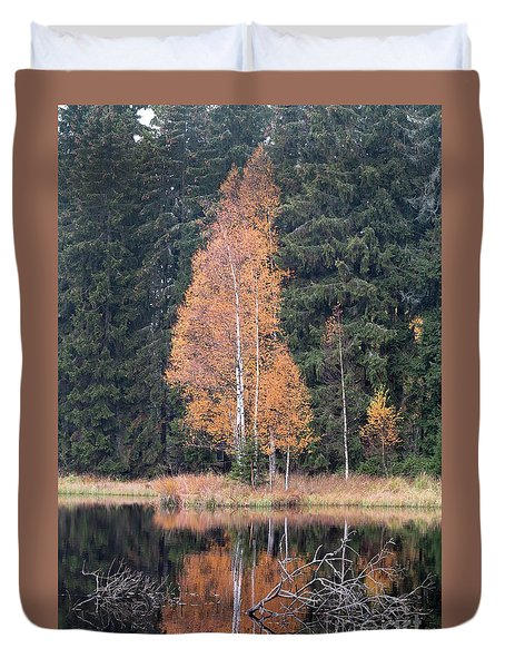 Autumn Birch By The Lake Duvet Cover by Michal Boubin