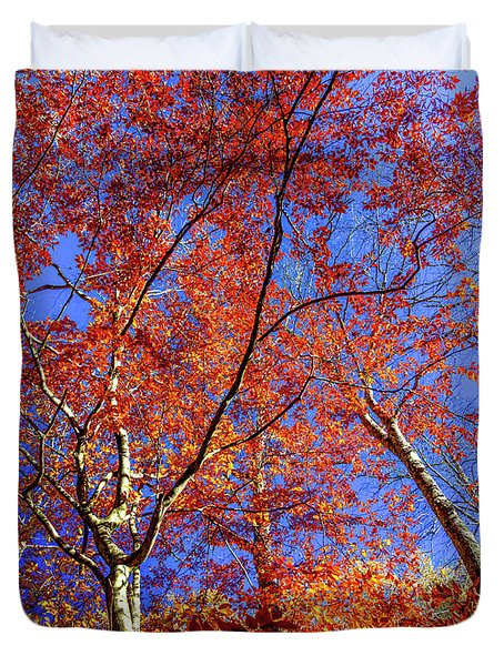 Duvet Cover featuring the photograph Autumn Blaze by Karen Wiles